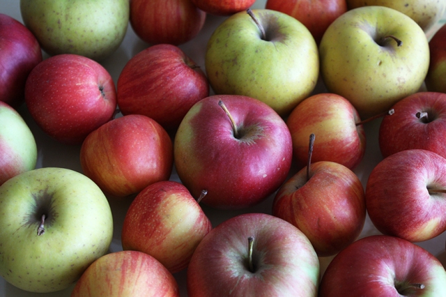 lots-of-apples.jpg