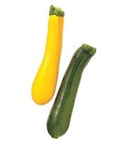 summer-zucchini_300